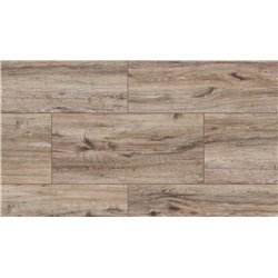 49666 Saguaro Oak