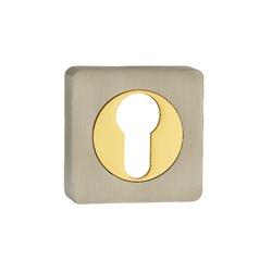 Накладка Ренц ET 02 SN/GP никель матовый/латунь блестящая